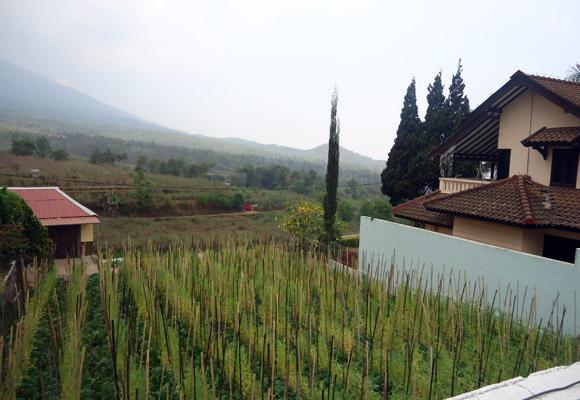 villa-batu-14-view